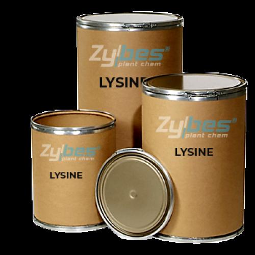 L-Lysine Aminoasit